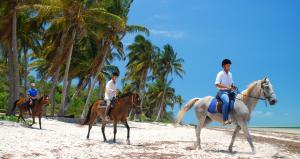 Benguera Island Ride Tour Packages